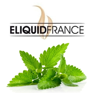 Άρωμα ELIQUID FRANCE FREEZING MINT 10ml (μέντα)