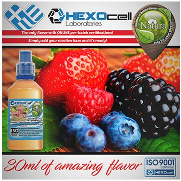 NATURA MIX SHAKE VAPE FOREST FRUIT MIX 30/100ML (φρούτα του δάσους)