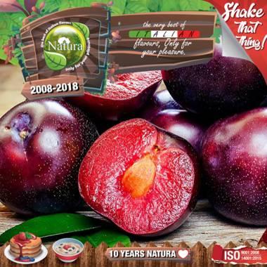 9649 - NATURA SHAKE AND TASTE FOREST PLUMZ 60/100ml (φρούτα του δάσους και δαμάσκηνα)